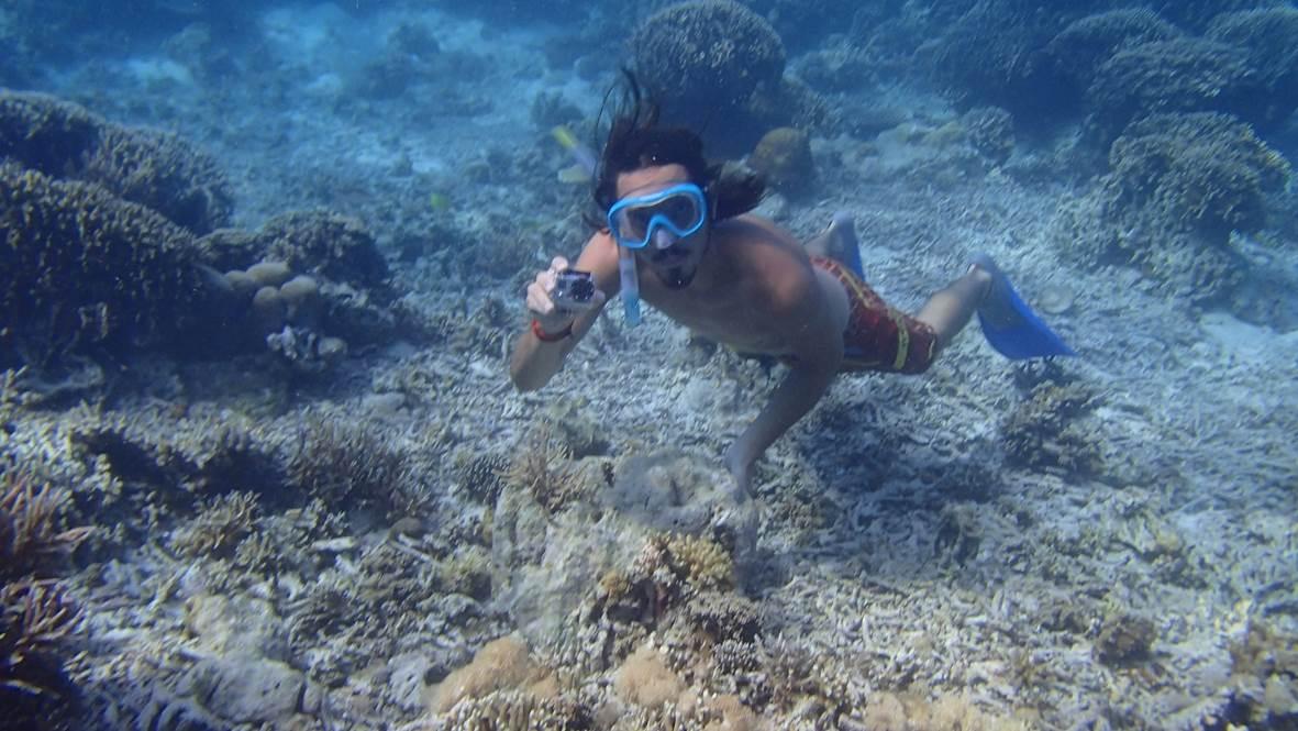 Plongée/Snorkeling