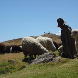 Wilcacocha - Huaraz