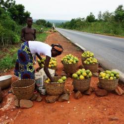 Vendeuse d'oranges - Route d'Abomey