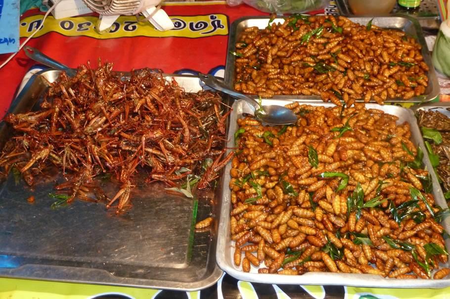 Amuses bouches (Insectes) - Kanchanaburi