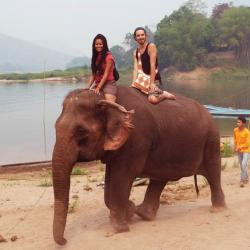 Camp d'éléphants - Pak Ou